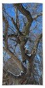A Tree In Winter- Vertical Bath Towel