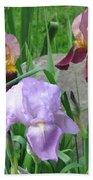 A Trios Of Irises Bath Towel
