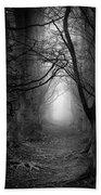 A Walk In The Woods Hand Towel