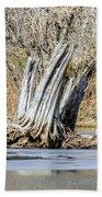 Aboriginal Stumps Bath Towel