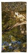 Abstract Autumn Reflection Bath Towel