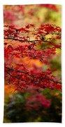 Acer Colors Bath Towel