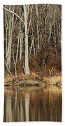 Across Skymount Pond - Autumn Browns Bath Towel