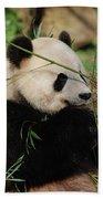 Adorable Giant Panda Bear Eating Bamboo Shoots Bath Towel