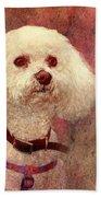 Adoration - Portrait Of A Bichon Frise  Bath Towel
