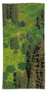 Aerial View Of Forest On Mountainside Bath Towel