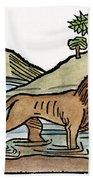 Aesop: Dog & Shadow, 1484 Bath Towel
