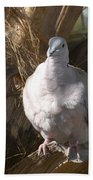 African Collared Dove 3 Bath Towel