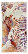 African Elephant _ The Governor Hand Towel