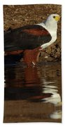 African Fish Eagle Bath Towel