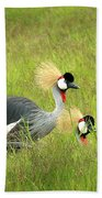 African Gray Crown Crane Bath Towel
