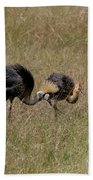 African Grey Crowned  Crane With Chick Bath Towel
