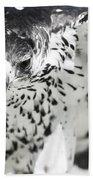 African Hawk Eagle 2 Bath Towel
