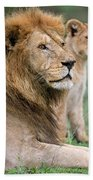 African Lion Panthera Leo With Its Cub Bath Towel