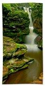 Afternoon At Adams Falls Bath Towel