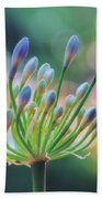 Agapanthus Dawn Bath Towel