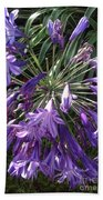 Agapanthus Flowers In Purple - New And Old Bath Towel