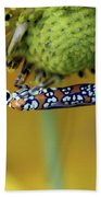 Ailanthus Webworm Moth #6 Bath Towel