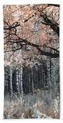 Airy Autumn In Woods Bath Towel