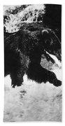 Alaska: Brown Bear Bath Towel
