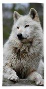 Alawa The Wolf Rests Bath Towel