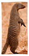 Alert Mongoose Bath Towel