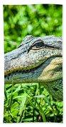 Alligator  Bath Towel