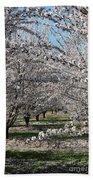 Almond Orchard Bath Towel