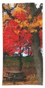 Altered State In The Park Bath Towel