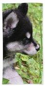 Alusky Puppy Tip Toeing Through Green Foliage Bath Towel