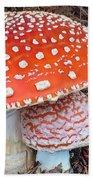 Amanita Muscaria - Red Mushroom Bath Towel