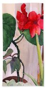 Amaryllis And Begonia Hand Towel