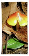 Amberina Mushroom - Tiny Jewel In The Forest Bath Towel