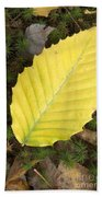 American Beech Leaf Bath Towel
