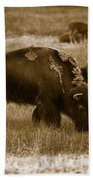 American Bison Grazing - Bw Bath Towel