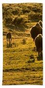 American Bison Sunset March Bath Towel