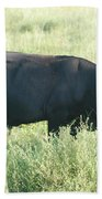 American Cow Bath Towel
