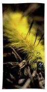 American Dagger Moth Caterpillar Bath Towel