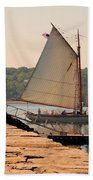 American Eagle At The Lighthouse Bath Towel