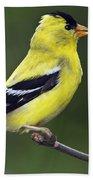 American Golden Finch Hand Towel