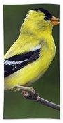 American Golden Finch Bath Towel