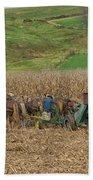 Amish Harvest In Ohio  Hand Towel