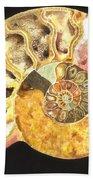 Ammonite Fossil Hand Towel