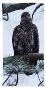 An Eagle Gazing Through Snowfall Bath Towel