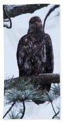 An Eagle Gazing Through Snowfall Bath Towel