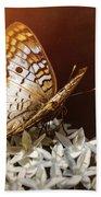 Anartia Jatrophae - White Peacock Butterfly  Bath Towel