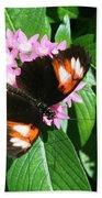 Anchored Down - Butterfly Bath Towel