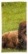 Ancient Bison Bath Towel by Rikk Flohr