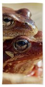 And Then I Found You. European Common Brown Frog Bath Towel