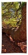 Angel Oak Tree 003 Bath Towel